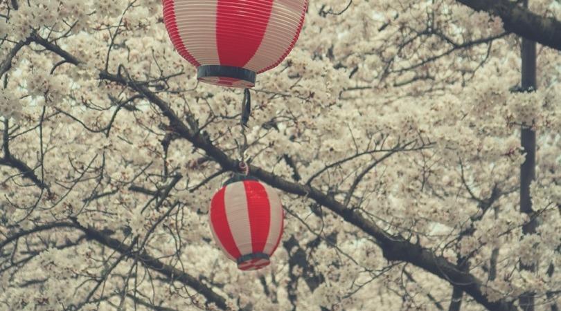 Qu'est ce qu'un PVT au Japon et quelles sont les conditions ?